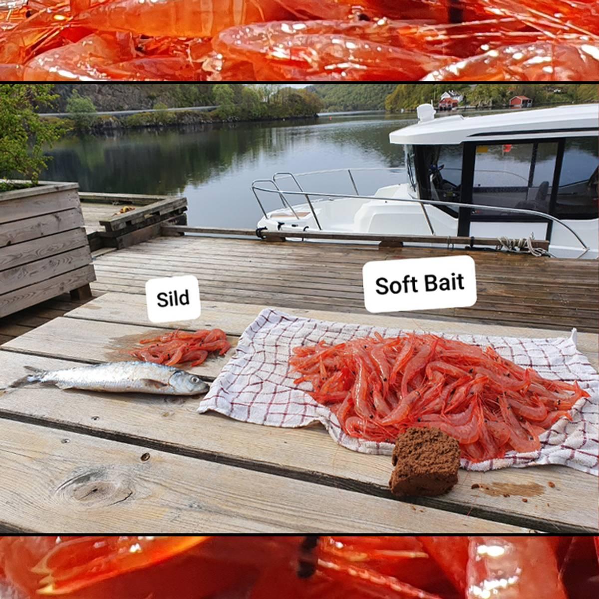 Soft Bait teineagn 4 kg