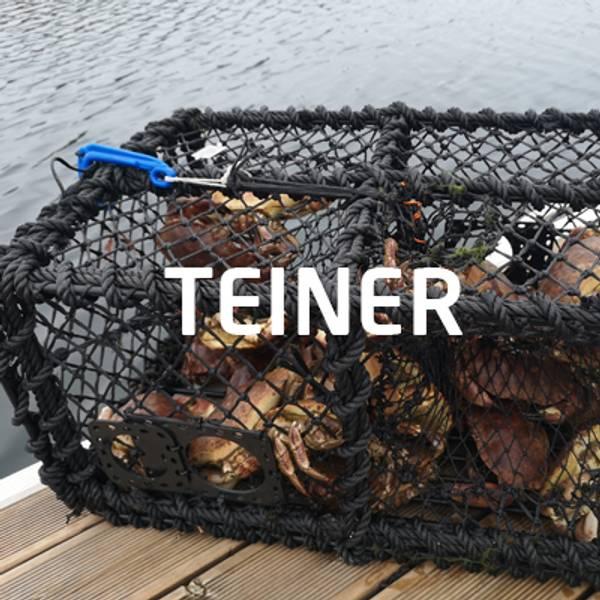 teiner krabbe hummer frøystadteine reketeine krepseteine kongekrabbeteine samleteeine